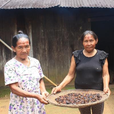 Combo Ají et Chocolats - Quimbaya - Sucré -